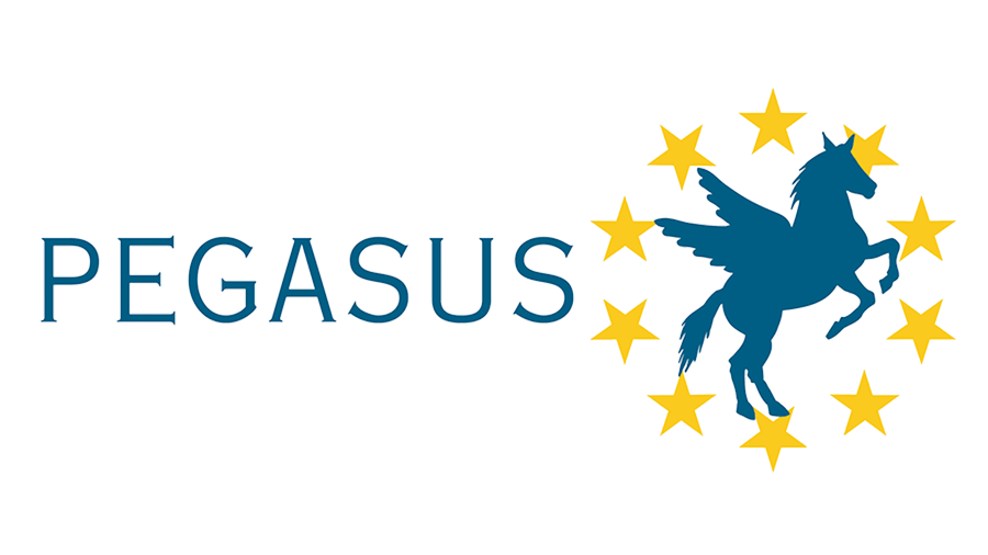 pegasus_valide_900.png